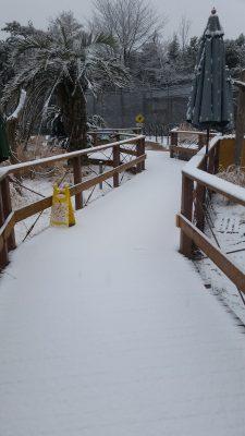 雪積もるWaoランド