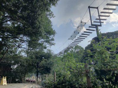 クモザルの吊り橋